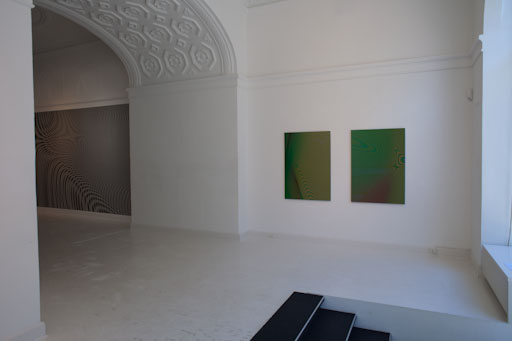 "installation view. Martin Asbæk Gallery, DK ""Moiré (RGB-print)"" 2009 and ""Moiré (Wallpaper)"" 2009installation view. Martin Asbæk Gallery, DK ""Moiré (Grey-print)"" 2009"
