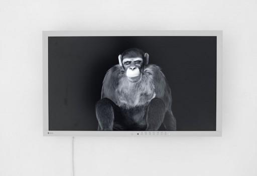 installation view. Martin Asbæk Gallery, DK